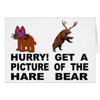 Cartão Pressa!  Obtenha uma imagem do urso da lebre