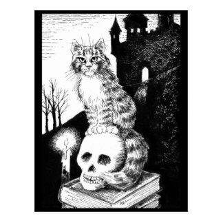 cartão preto & branco do gato de Maine do racum do
