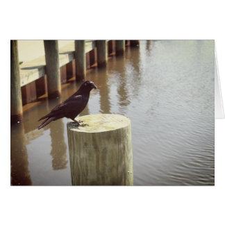 Cartão preto do corvo