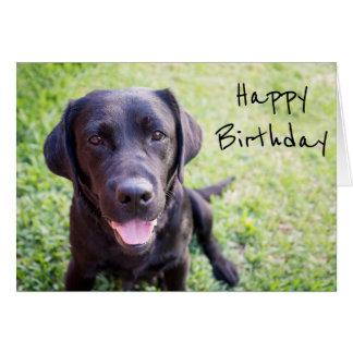 Cartão preto do feliz aniversario de Labrador