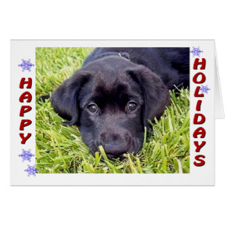 Cartão preto do filhote de cachorro do laboratório