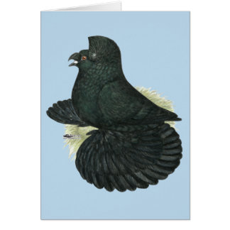 Cartão Preto do pombo da trompetista