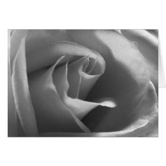 Cartão Preto-e-Branco-Rosa