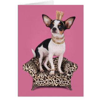 Cartão Princesa da chihuahua