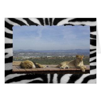 Cartão Produto preguiçoso do leão