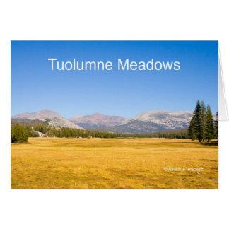 Cartão Produtos de Yosemite Califórnia dos prados de