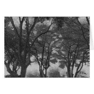 Cartão Profundamente nas árvores