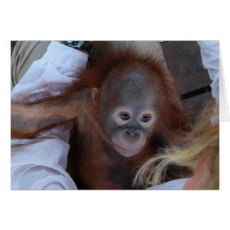 Cartão Promessa aos órfão dos animais selvagens