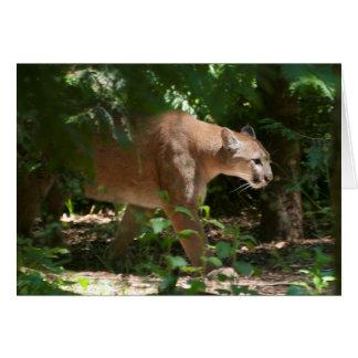 Cartão Puma que dá uma volta