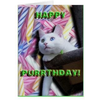 Cartão Purrthday feliz!
