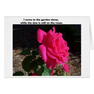Cartão ---Quando o orvalho estiver ainda nos rosas--
