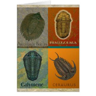 Cartão Quatro fóssil Trilobites