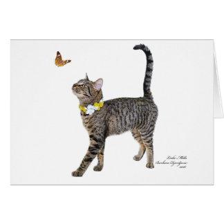 Cartão que caracteriza Tabatha, o gato malhado