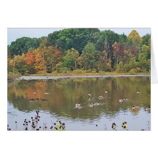 Cartão Queda no lago Isaac Ohio