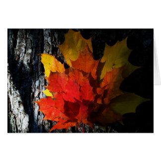 Cartão Queda-Temático - folhas de bordo