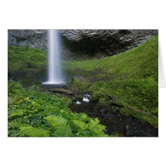 Cartão Quedas de Latourell, desfiladeiro do Rio Columbia,