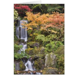 Cartão Quedas e cores celestiais do outono