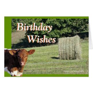 Cartão Quella&Hay BdayWishes-personaliza
