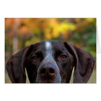Cartão Quem cão de Dat?
