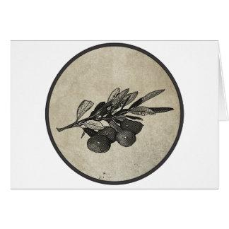 Cartão Ramo de oliveira