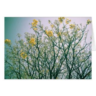 Cartão Ramos de árvore e flores amarelas