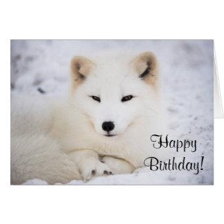 Cartão Raposa ártica branca