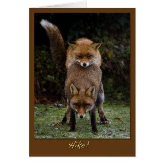 Cartão Raposas de acoplamento