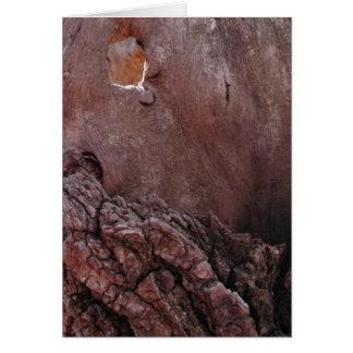 Cartão Rasgos de madeira