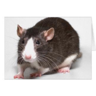 Cartão Rato de Brown com chama branca no nariz