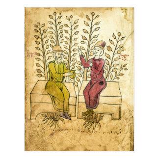 Cartão real da foto do manuscrito medieval do