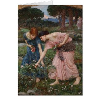 Cartão Recolhendo Rosebuds por John William Waterhouse