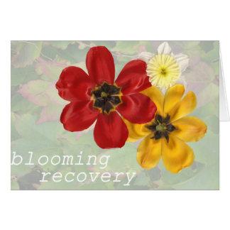 Cartão Recuperação 6 de florescência