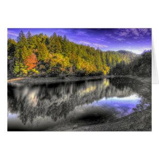 Cartão Reflexão da árvore de Tam