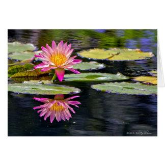 Cartão Reflexão do lírio de água