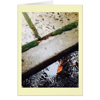Cartão Reflexões