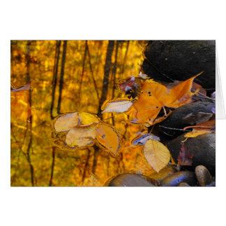 Cartão Reflexões do ouro do outono