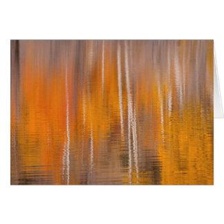 Cartão Reflexões do outono na lagoa | Winthrop do castor,