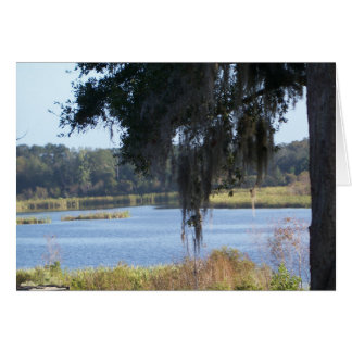 Cartão Reflexões do sul do lago summer