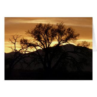 Cartão Reflexões em uma árvore - vazio