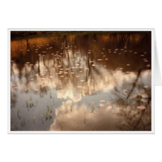 Cartão Reflexões em uma lagoa