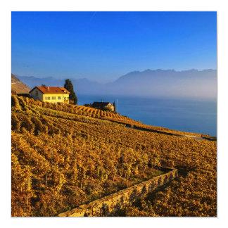Cartão Região de Lavaux, Vaud, suiça