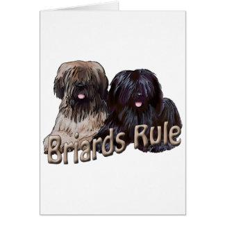 Cartão regra dos briards