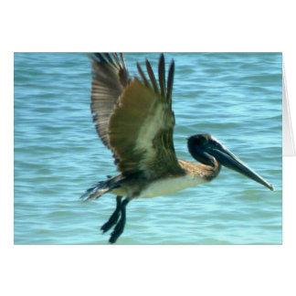 Cartão Relógio do pelicano