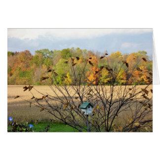 Cartão Restos das folhas na queda