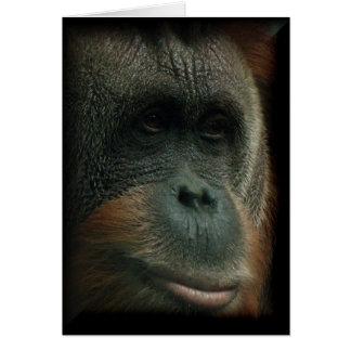Cartão Retrato #2 do orangotango - o pensamento vazio de