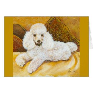 Cartão Retrato branco da caniche