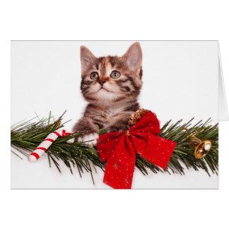 Cartão Retrato do gatinho bonito do Natal