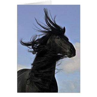 Cartão Retrato preto do cavalo do frisão