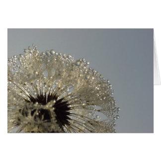 Cartão Roda das gotas - dente-de-leão com gotas