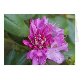 Cartão Rododendro